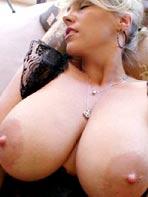 Daily Tits - Wifey