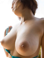 Natural Japanese tits