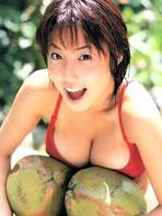 Megumi Asian Melons
